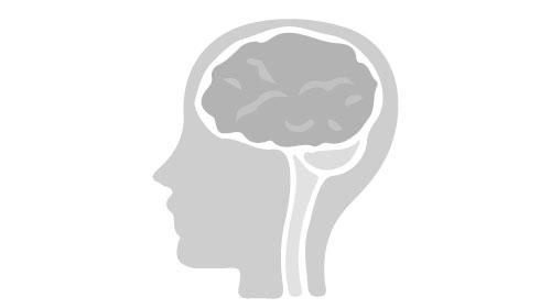 脳のアンチエイジング